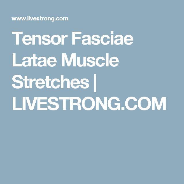 Tensor Fasciae Latae Muscle Stretches | http://www.dralexjimenez.com/tensor-fascia-latae-dysfunction-and-sciatica/