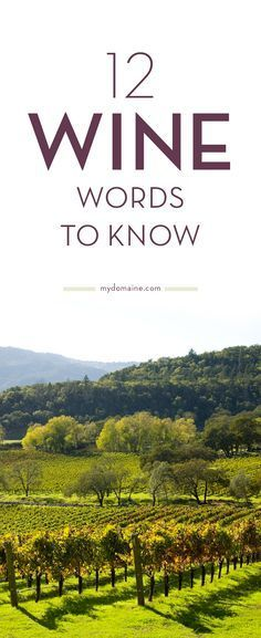 Learn the language of wine and impress your family and friends