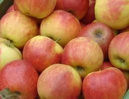 Κολατσιό από ... σπίτι: Κρουασανάκια με μαρμελάδα μήλου χωρίς ζάχαρη ή άλλ...