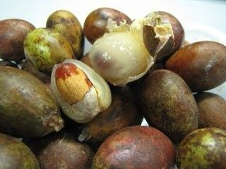 Typical of Indonesian fruit : 'Matoa'