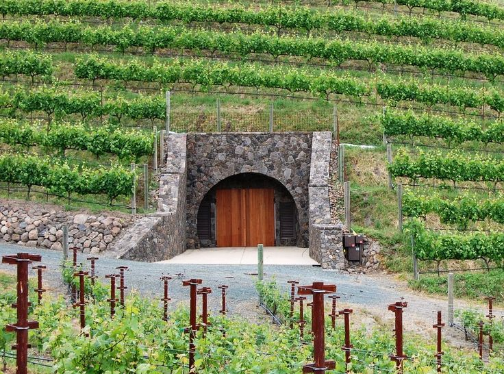Porter Family Vineyards - Napa, CA, United States. Winery in the Cave. For more information about this winery and our extensive guide to the best USA wineries as well as information about wine, visit: http://www.allaboutcuisines.com/wine #Wineries Napa Valley