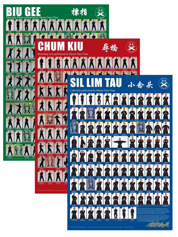 wing chun forms step by step pdf