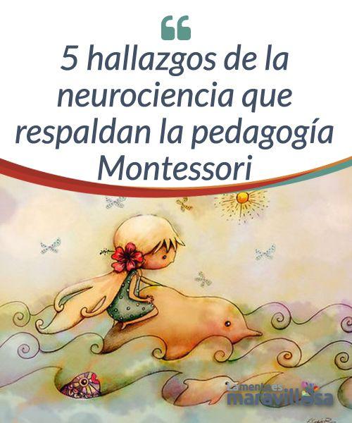 """5 hallazgos de la neurociencia que respaldan la pedagogía Montessori """"La primera tarea de la educación es agitar la vida, pero dejándola libre para que se desarrolle"""", afirmó María Montessori hace más de un siglo. Hoy, el triángulo educativo en el que se basa su pedagogía y sus principios fundamentales están siendo evidenciados por la neurociencia."""