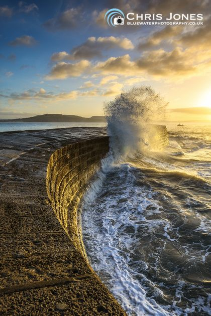 Early Morning Light On The Cobb, Lyme Regis, Dorset