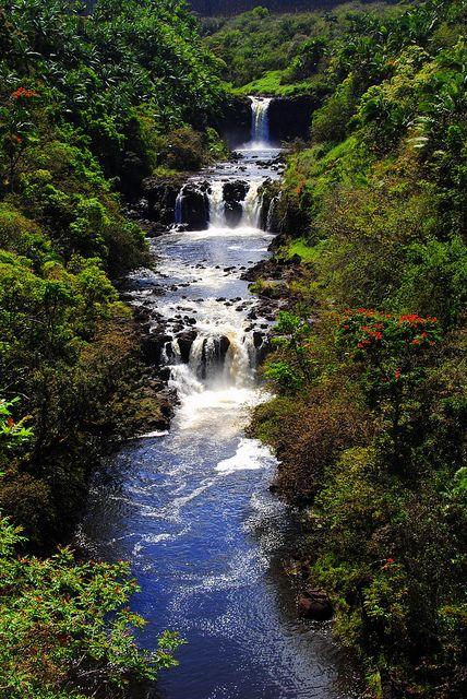 Umauma Falls, World Botanical Gardens, Hilo, Island of Hawaii