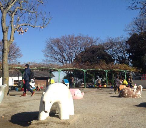 Tokyo 飛鳥山公園