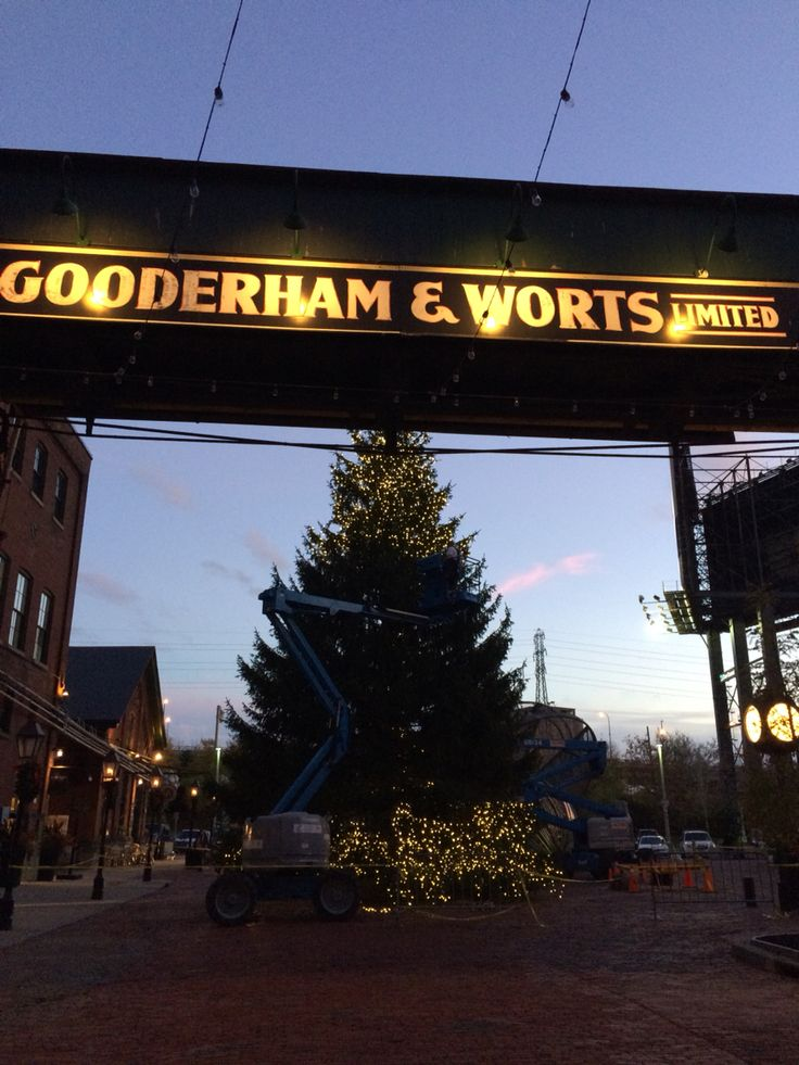 Getting the Christmas Tree ready for the 2015 Toronto Christmas Market. #livingatthedistillery #distillerydistrict #christmasmarket