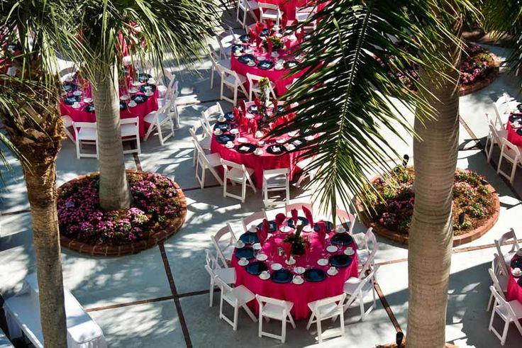 How About A Reception Among The Palm Trees Tradewinds