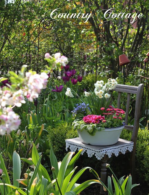 My Country Cottage Garden