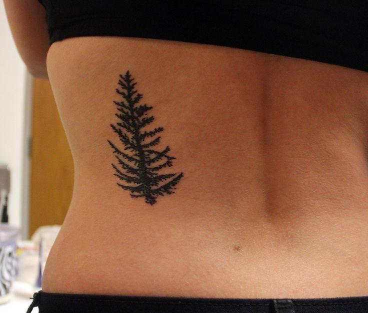 tamarack tree done by Ty at Burly Fish tattoo in Flagstaff, Arizona.  When I bend forward it grows.