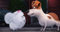 Image - Max and gidget.jpg | The Secret Life of Pets Wiki | Fandom ...