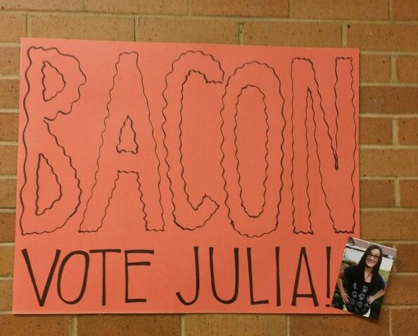 student council campaign posters