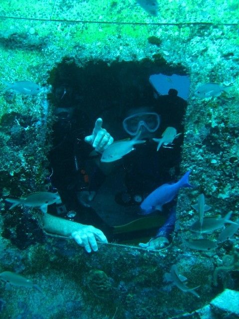 129 Best Images About Underwater On Pinterest The