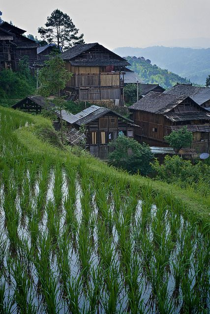 Dong village in Chinese mountains, Guizhou, South China by Alex_Saurel on Flickr.