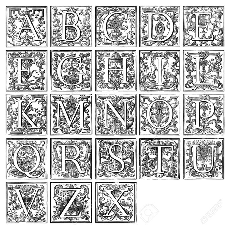 Best images about typography on pinterest renaissance