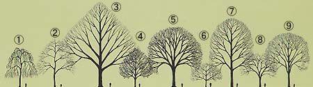 一般社団法人日本造園建設業協会 街路樹剪定士