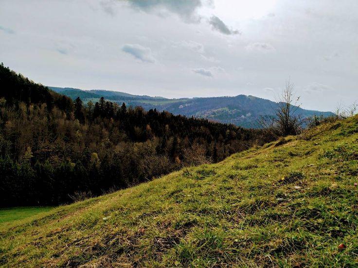In den Highlands von Nunningen.  #Naturmomente #Schwarzbubenland #Solothurn #Nunningen #Schweiz  #photooftheday #magicplaces #kraftorte #switzerland #switzerlandpictures #magicswitzerland  #nature #naturelovers #green #forest #fall #autumn #sky #mountains