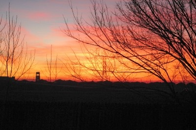 The back of our house faces east and there's a farm field beyond the backyard fence. I'm an early riser. When the leaves are off the trees in the winter, I get to see beautiful sunrises. (Richard S. Buse photo)