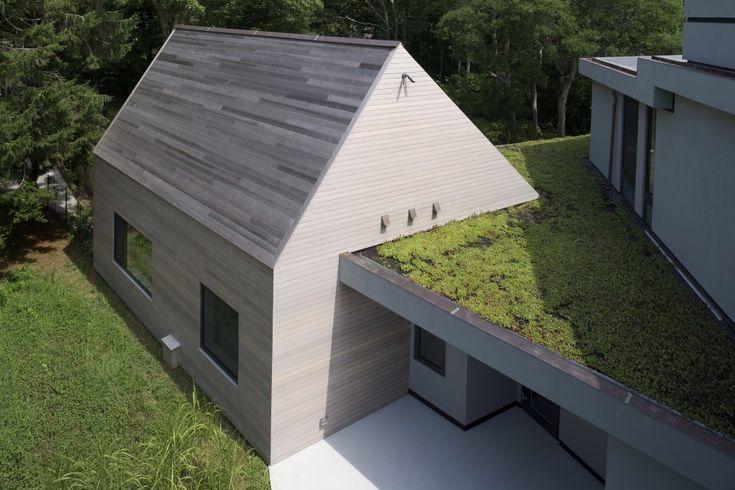 Sayres House & Hanging Gardens / Maziar Behrooz Architecture