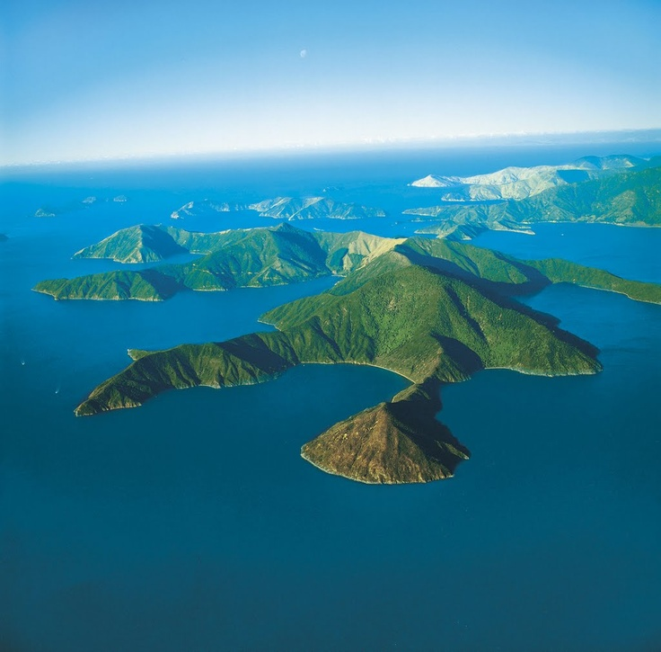 Forsyth Island and Pohuenui Island - Photo from helicopter