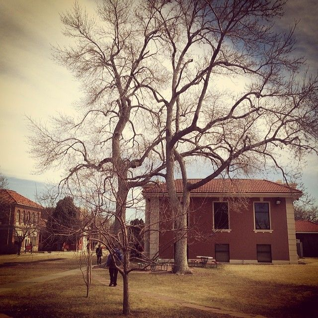 Colorado Mountain College: 17 Best Images About Campus On Pinterest