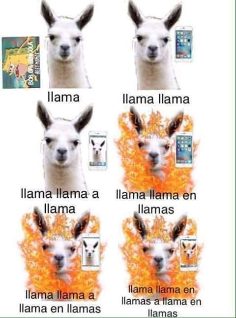 ★★★★★ Memes en español chistosos: Llama inception I➨…