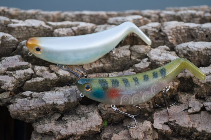 Brand new StutterStep topwater lure by Bill Lewis Outdoors