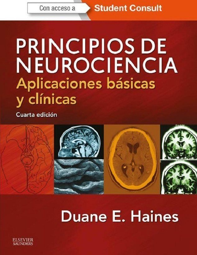 Principios De Neurociencias Kandel Ebook
