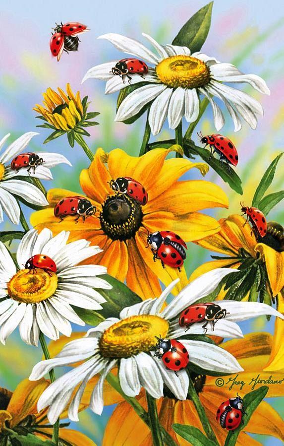"""""""Ladybug Retreat"""""""