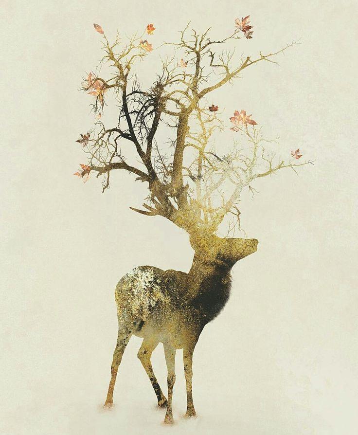 88 best Art: Nature images on Pinterest | A little night music, A ...