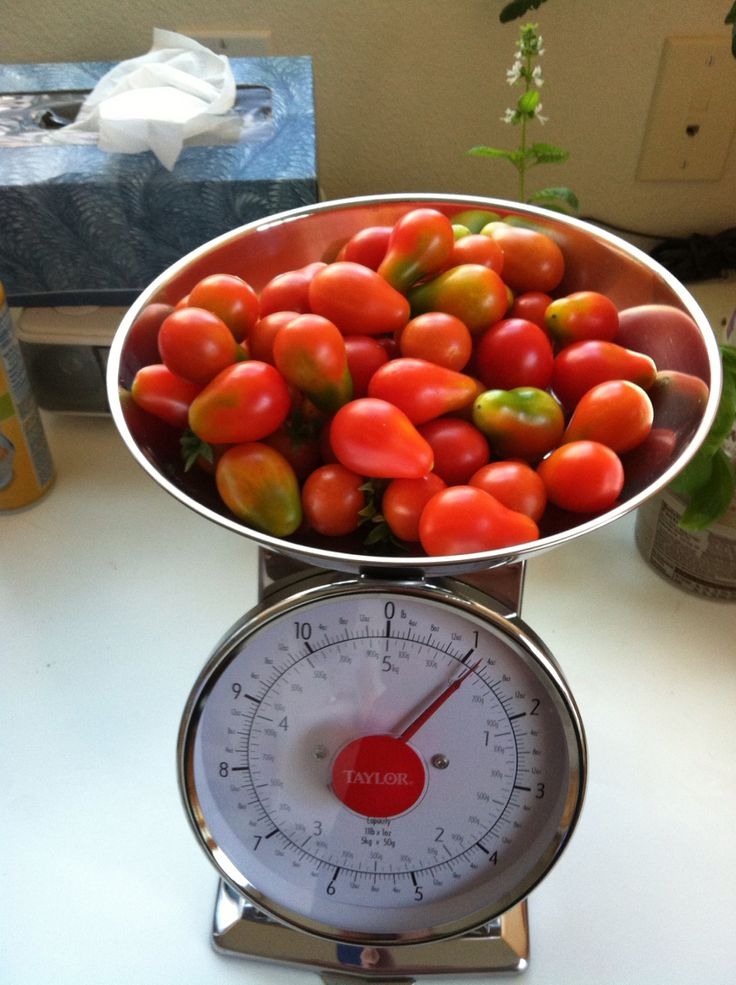 Cherry tomatos.
