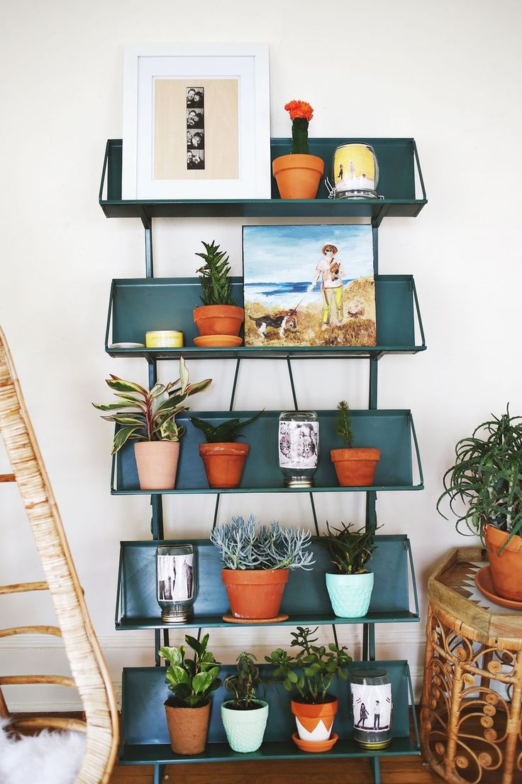 Weekend Snapshots-- love the plant shelves and plant in a ball jar!