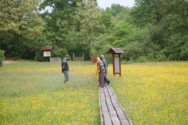 Magyar Nemzeti Parkok Hete 2017