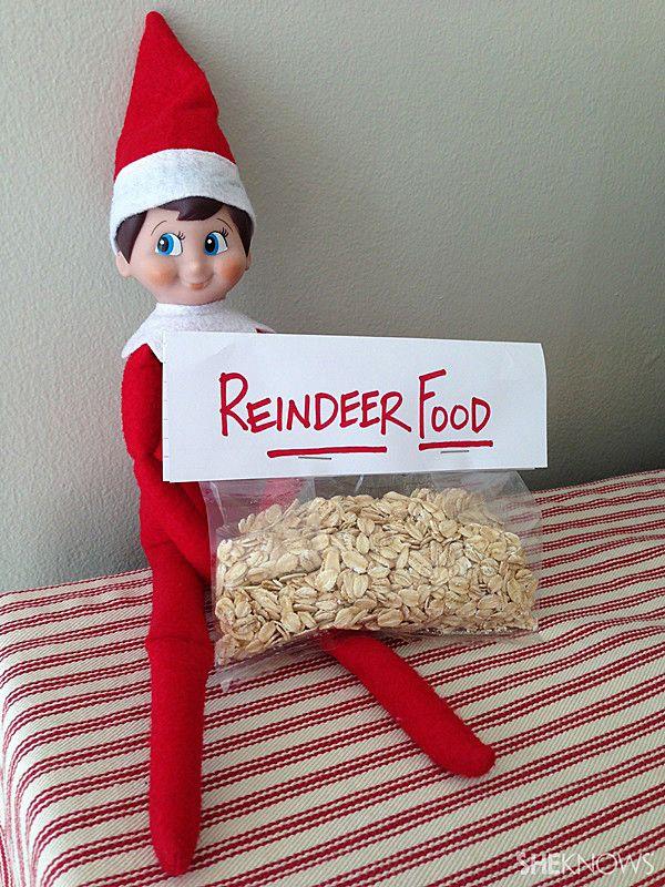 elf with reindeer food