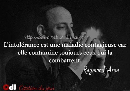 http://www.citation-du-jour.fr/citations-raymond-aron-1781.html