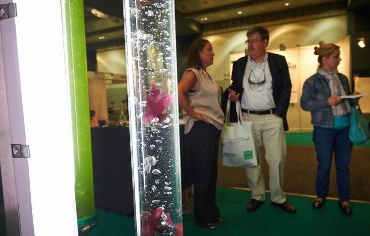 EUBCE 2014, #biomass #exhibition