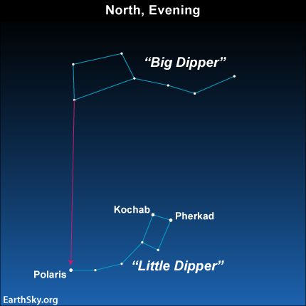 Use the two outer stars in the bowl of the Big Dipper to find Polaris, which marks the end of the handle of the Little Dipper.  Kochab and P...