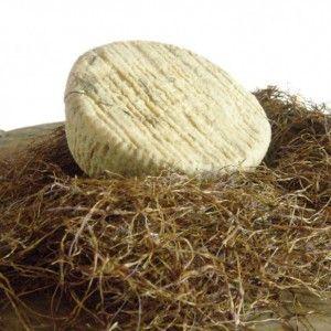 CACIOFIORE AQUILANO P.A.T. Formaggio grasso, a breve stagionatura, a pasta molle. Fra i pochi formaggi italiani che utilizzano storicamente un coagulante vegetale, prende il nome proprio dal fiore del carciofo che lo caratterizza. Il latte è di pecore di varie razze. Indicato per i vegetariani.