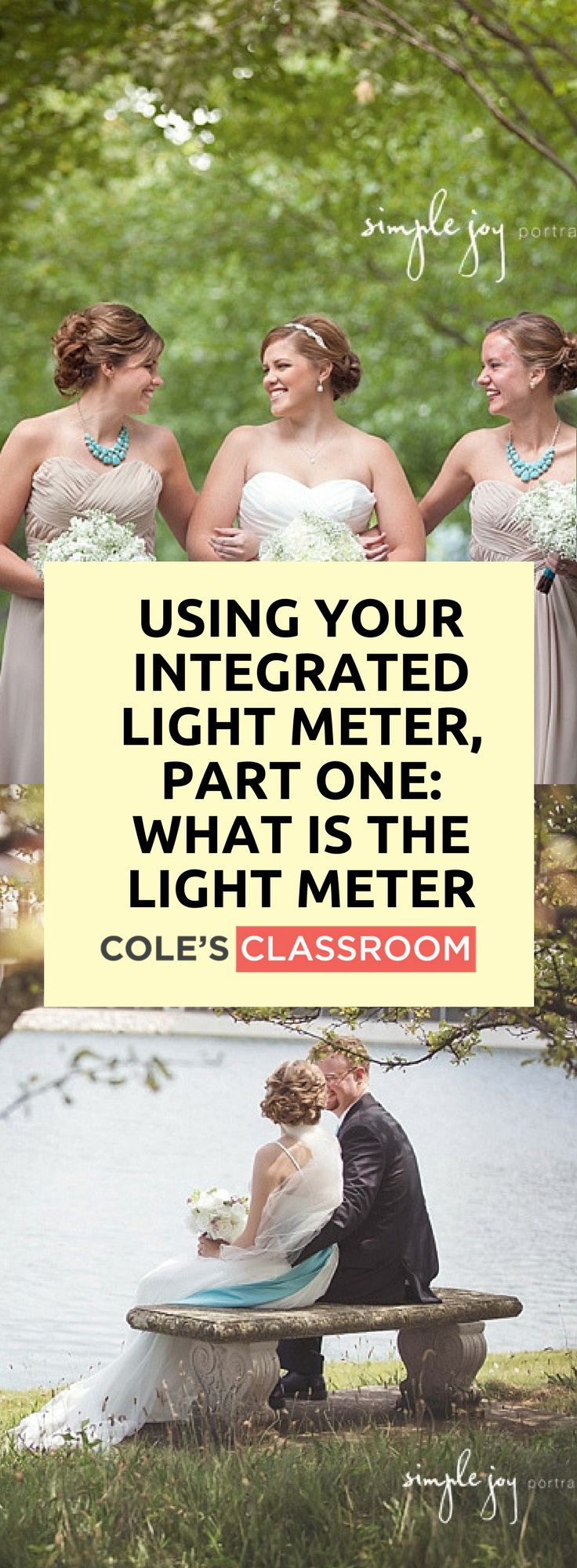 PHOTOGRAPHY TIPS & TECHNIQUE: Using Your Integrated Light Meter, Part One: What is the Light Meter. Find out more at: https://www.colesclassroom.com/mastering-exposure-camera-integrated-light-meter-part-one/