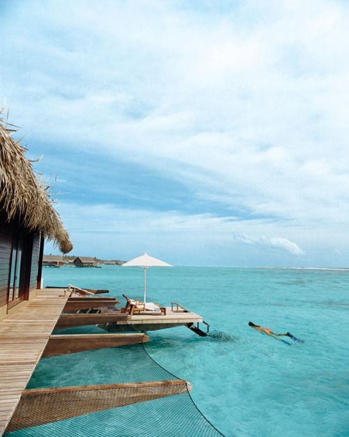 Buckets Lists, Dreams Vacations, Best Quality, Tropical Paradis, Beach, Travel, Places, The Maldives, Borabora