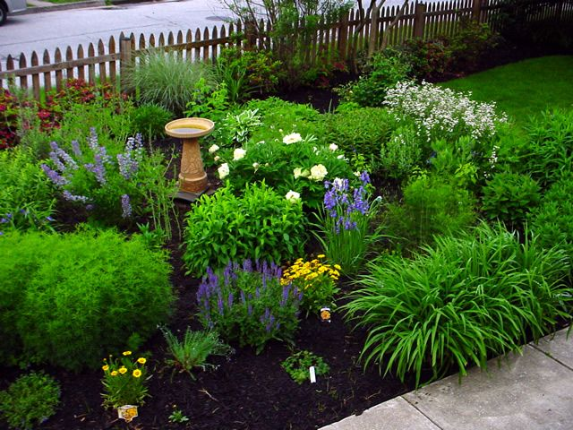 Spring In The Baltimore Highlands. Gardening MagazinesLandscaping ...