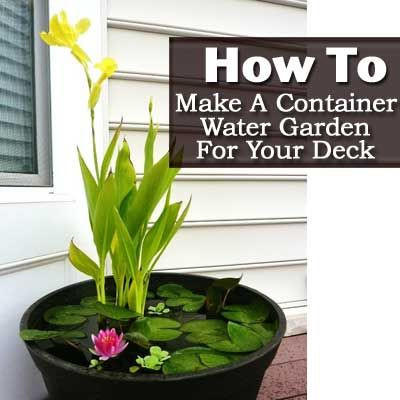 How To Make A Container Water Garden For Your Deck