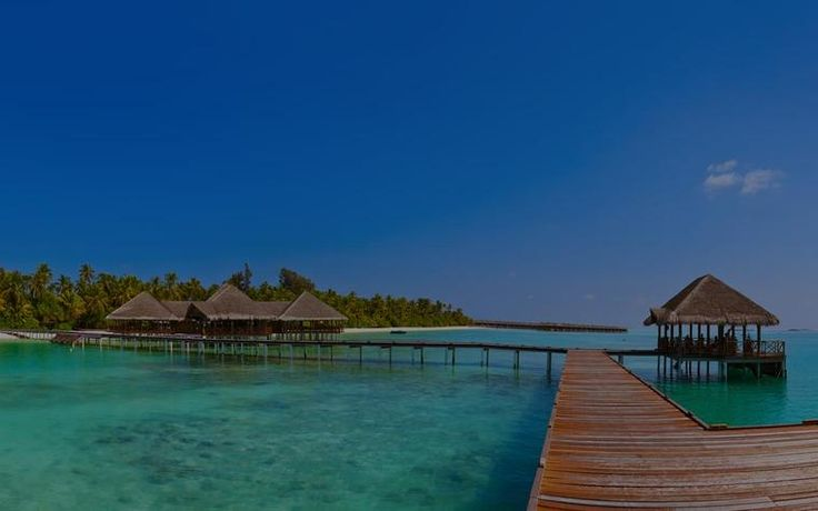 Top 5 Hotels in Maldives for the Budget Traveller | MakeMyTrip Blog