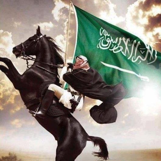 Black Arabian with Bedu rider holding the flag of Saudi Arabia
