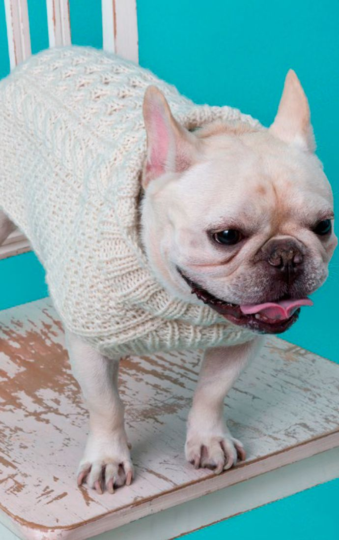 Teje este elegante séter en cualquiera de las cinco tallas y protege a tu mejor amigo del frío. El suéter se muestra en blanco pero se verá tan adorable en color rosa o gris.