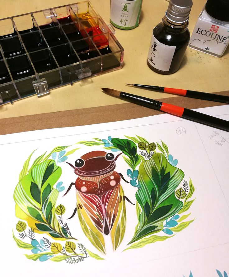 insect in watercolor on Behance