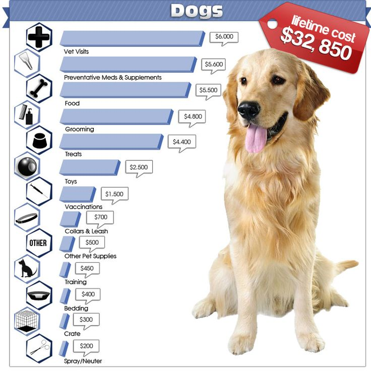 The cost of owning a dog averages about 32,850 for their