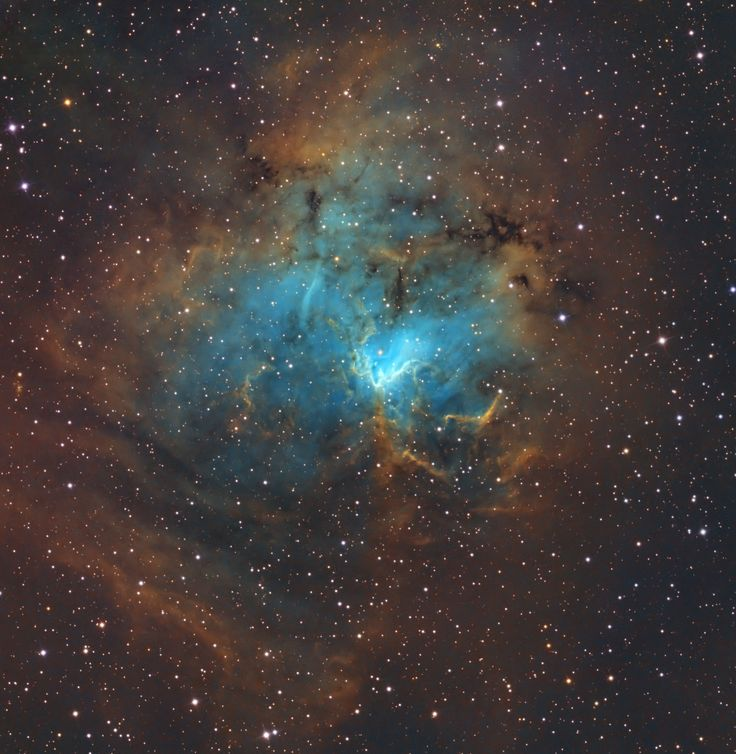 NGC1491 is an emission nebula in Perseus. It is about 10,000 light years away. Veteran astrophotographer Bill Snyder shot this photo in early 2013 from Heavens Mirror Observatory SRO in California's Sierra Nevada Mountains. He used a Planewave 17 inch telescope with an Apogee U16 camera, as well as a Paramount ME mount to capture the image. Posted on March 8, 2013. (http://billsnyderastrophotography.com/)