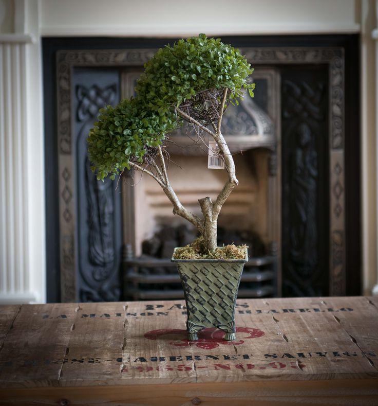 Bonzai tree. available from Berona Interiors.ie