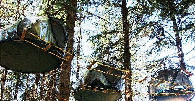 Sospesi nella magia della Natura: liberi dagli inconvenienti del campeggio come insetti e sassi sotto la schiena, si può anche guardare il cielo notturno